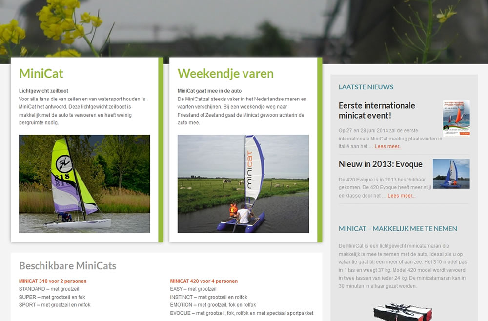 wordpress-website-minicat