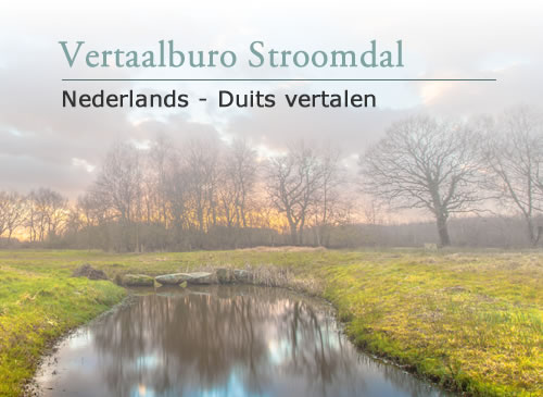 Website vertalen