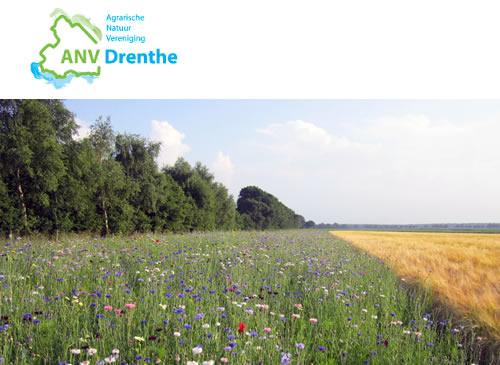 ANV Drenthe