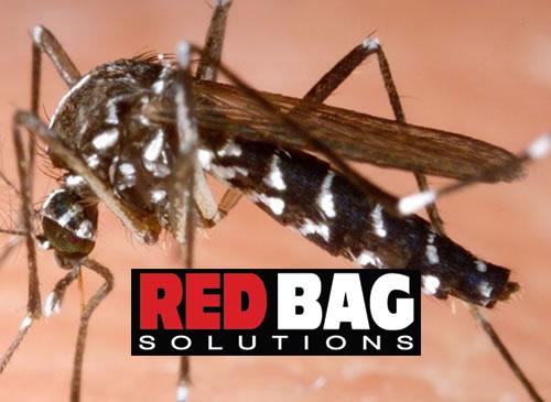 RedBag Solutions